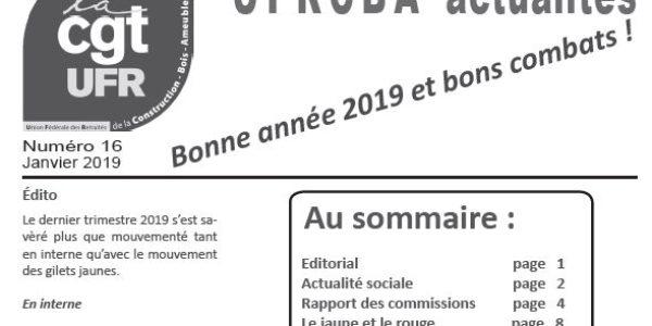 UFR Actualités 16 – janvier 2019